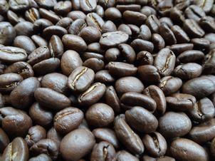 香ばしい焙煎したてのコーヒー豆(ツキノワコーヒー店)